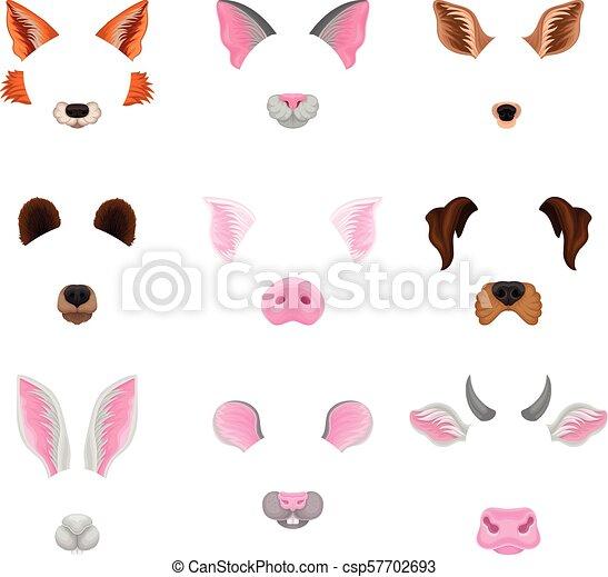 Plano, decoración, conjunto, animal, colorido, noses., foto, selfie ...
