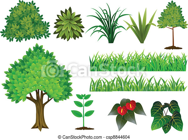 Plant and tree collection - csp8844604