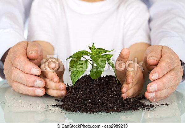 plant, concept, kiemplant, -, milieu, vandaag - csp2989213