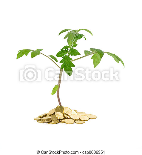 Plant growth - business concept - csp0606351