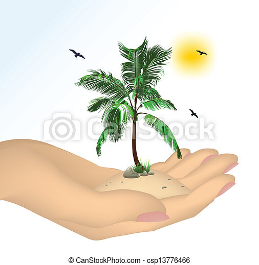 Plant in a hand isolated on white background - csp13776466