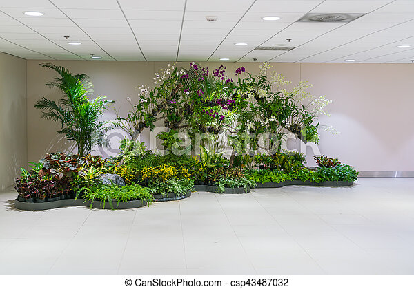 Plant in office building . - csp43487032