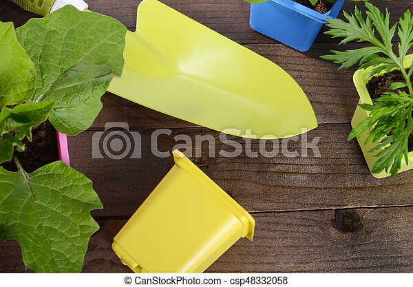 Plant in pot on wooden background - csp48332058