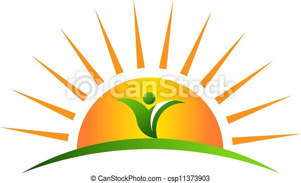 Plant in sunrise - csp11373903