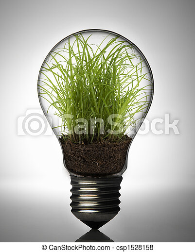 Plant inside bulb - csp1528158