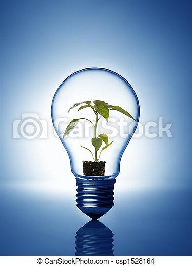 Plant inside bulb - csp1528164