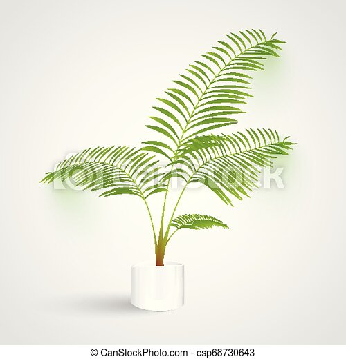 Plant on white background, vector - csp68730643