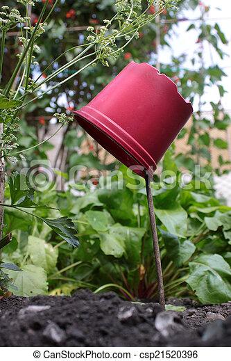 Plant Pot Marker - csp21520396