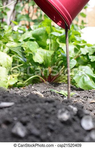 Plant Pot Marker - csp21520409