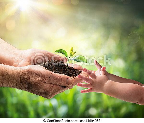 planta, antigas, dar, -, jovem, meio ambiente, geração, proteção, criança, homem novo - csp44694057