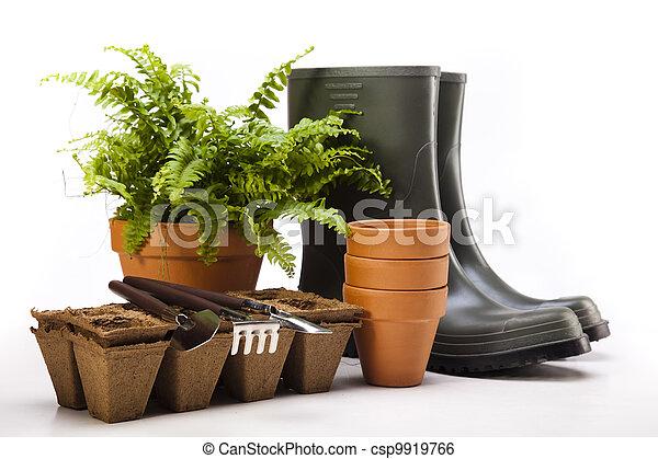 Botas de jardín con herramientas, planta - csp9919766