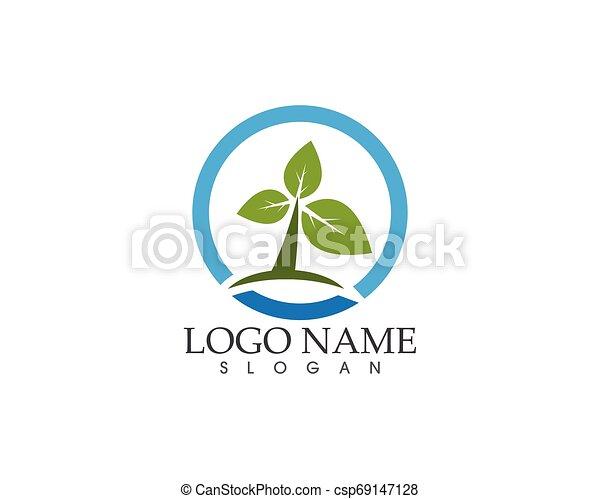 planta, hoja, naturaleza, ilustración, vector, verde - csp69147128