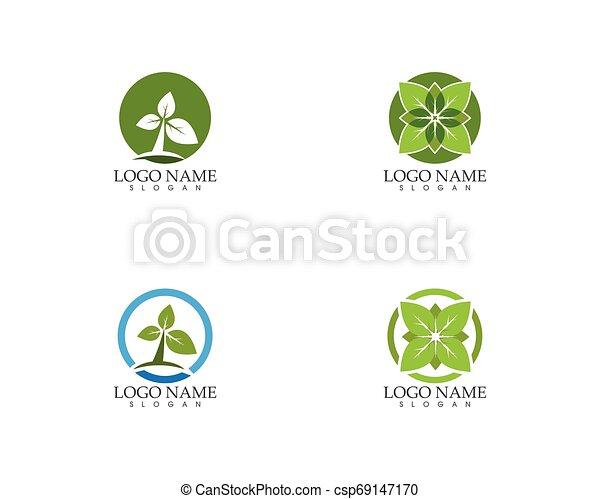 planta, hoja, naturaleza, ilustración, vector, verde - csp69147170