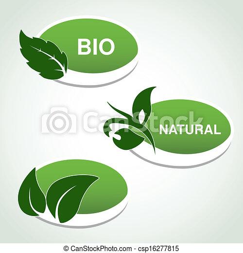 planta, natural, hoja, -, símbolos, vector, pegatinas - csp16277815
