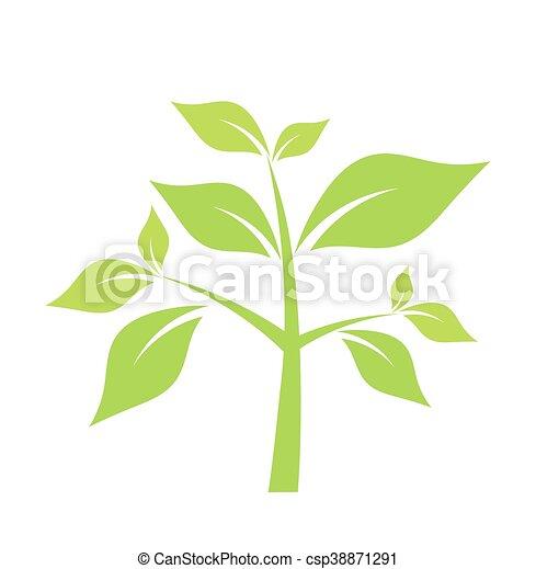 Ilustración vectorial verde - csp38871291