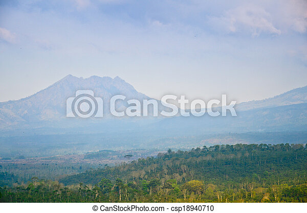plantación, java, café, indonesia, este - csp18940710