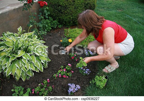 Plantar, flores. Plantar, mulher, flores, jardim fotografia - Faça ...