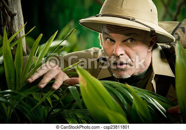 Aventurero mirando a través de las plantas - csp23811801
