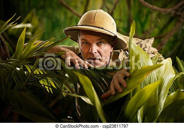 Aventurero mirando a través de las plantas - csp23811797