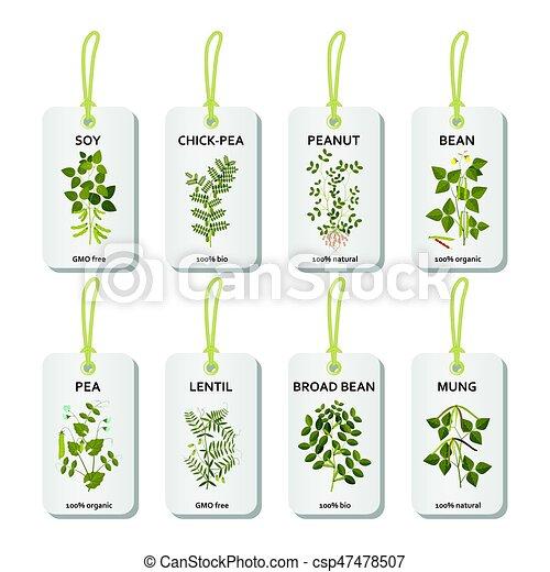 Plantas etiquetas hojas legumbres flores vainas - Etiquetas para plantas ...