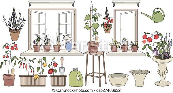 plantas, flor, vegetables., potes, ervas, janela, crescendo, sills, sacada - csp27466632