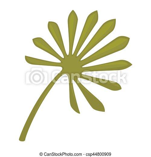 Plante feuille grand isol arri re plan vert palmetto for Plante 9 feuilles