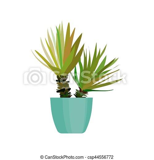 Plante Feuille Maison Pot Vert Vector Flat Cactus