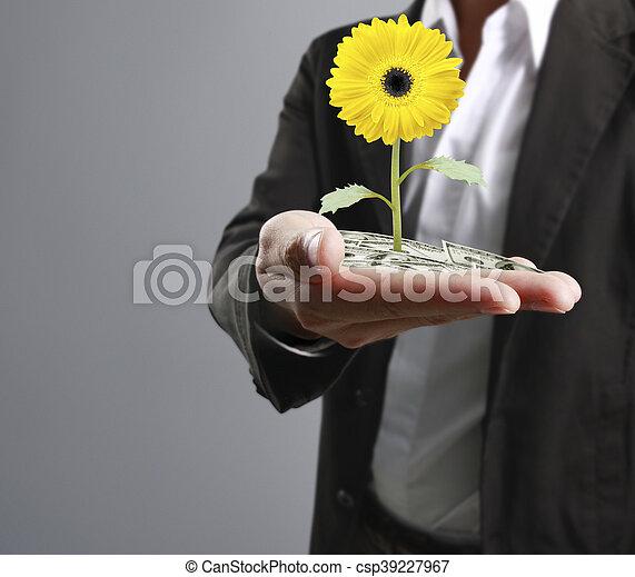 plante, humain, tenant mains - csp39227967