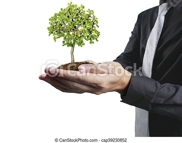 plante, humain, tenant mains - csp39230852