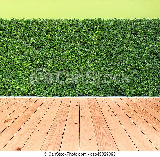 Plante Jardin Vertical Plancher Mur Feuilles Bois Vert
