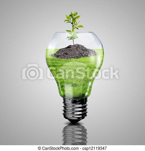 Häufig Dessin de plante, lumière électrique, intérieur, il, ampoule  WR54