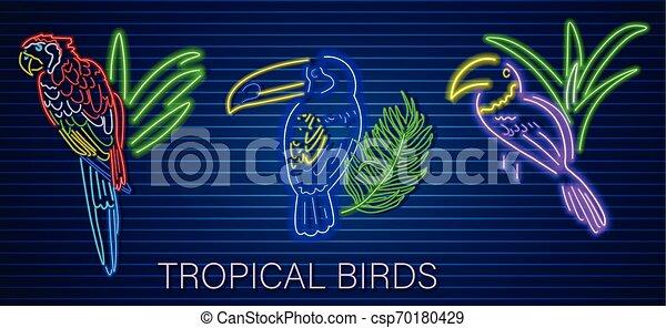 Loro tropical fijado vector neón. Las brillantes aves decoran plantillas - csp70180429