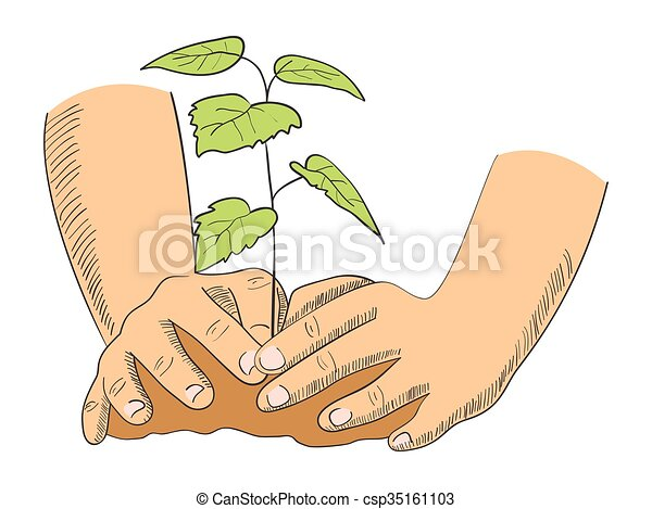 planting tree illustration of hands planting young tree rh canstockphoto com planing clipart planting clippings