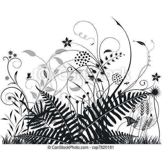 Ferns Plants Drawings