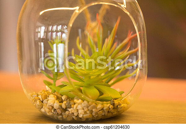 plants in a glass vase the interior of a cafe - csp61204630