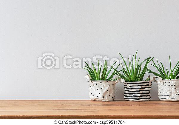 Plants on empty wall - csp59511784
