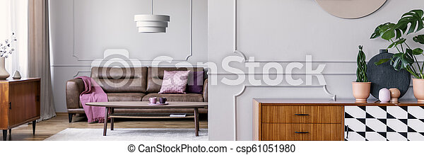 Plants on wooden cabinet in grey living room interior with pink blanket on leather couch. Real photo - csp61051980