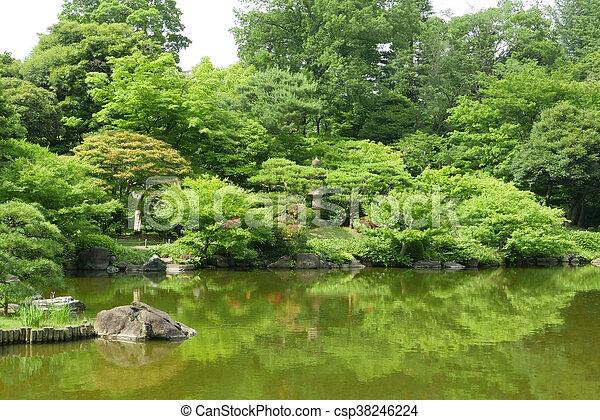 Plants, Water Pond With Reflection In Japanese Zen Garden   Csp38246224