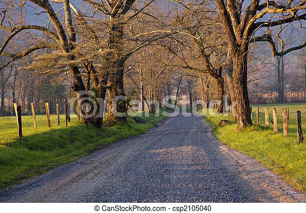 plattelandsweg, zonopkomst - csp2105040