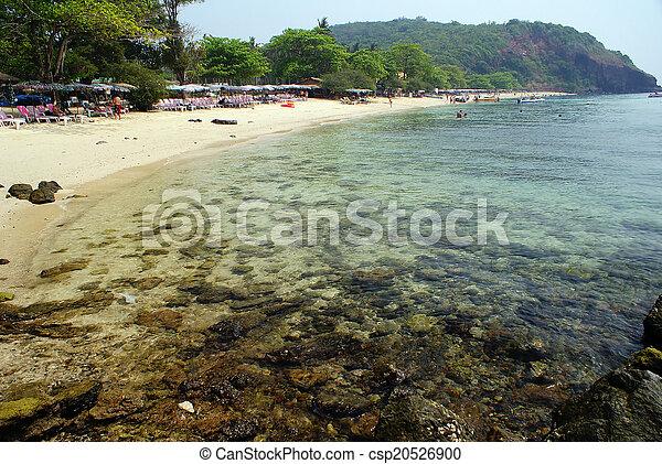 Playa - csp20526900