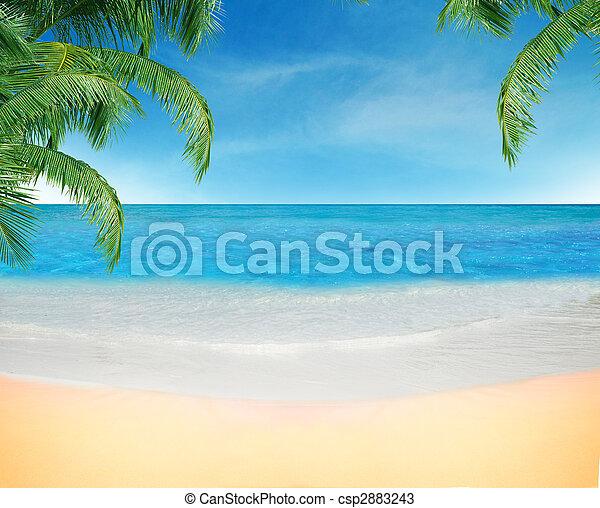 Playa - csp2883243