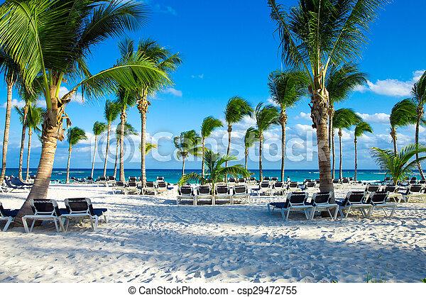 Playa - csp29472755