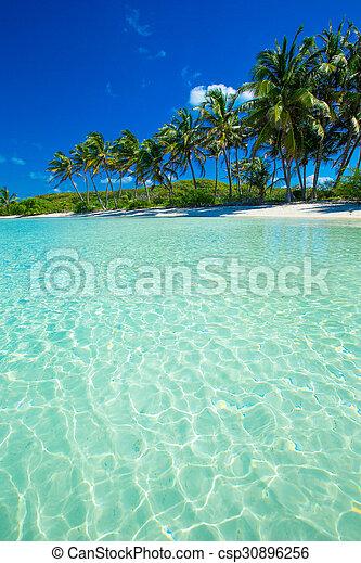 Playa - csp30896256