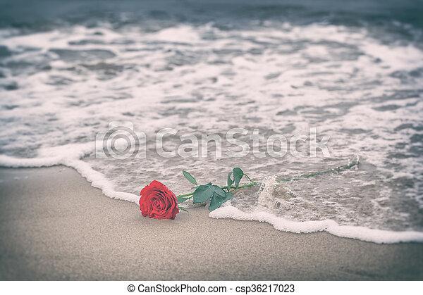 playa., amor, rosa, lejos, vintage., ondas, lavado, rojo - csp36217023