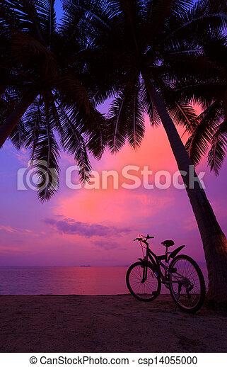 Un atardecer tropical con palmeras y bicicleta en la playa, panorama vertical - csp14055000