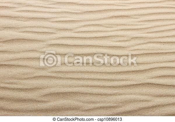 Arena de playa - csp10896013