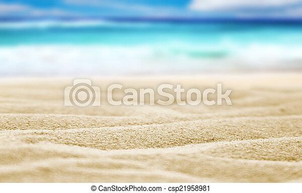 Arena de playa - csp21958981