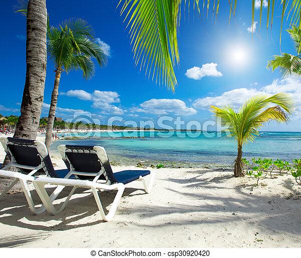 Playa - csp30920420