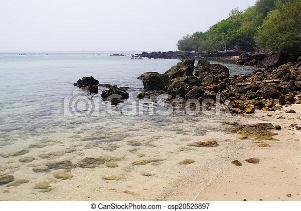 Playa - csp20526897