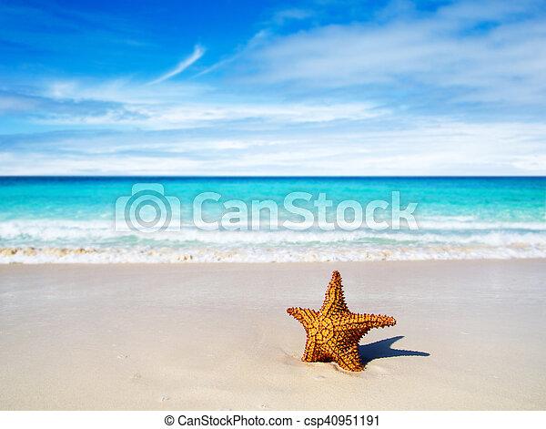 Playa - csp40951191